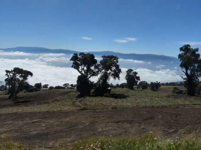 sur les pentes du volcan Turrialba