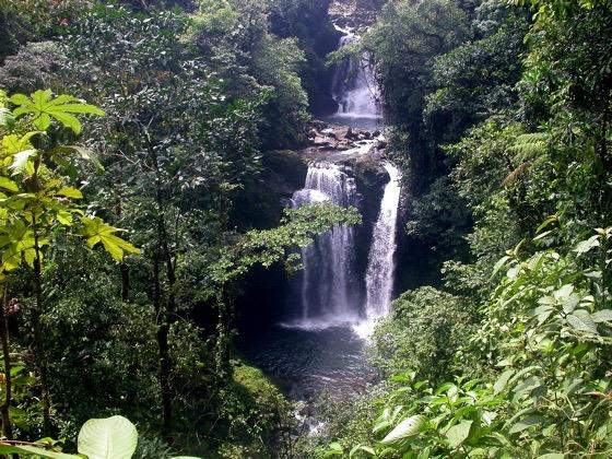 Catarata Rara Avis cascade