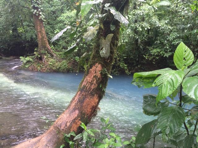 laguna Azul Tenorio