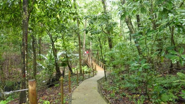 randonnée parc national manuel antonio