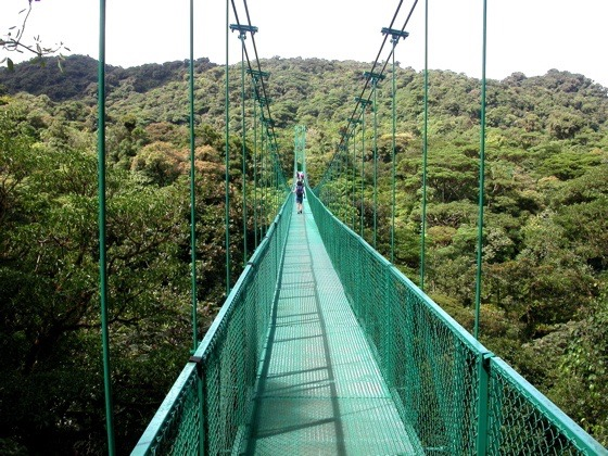 Skywalk Monteverde pont suspendu