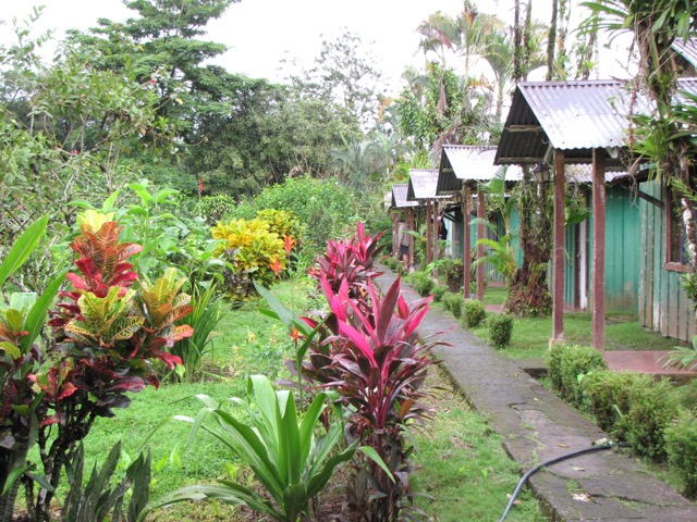 lodge foret costa rica