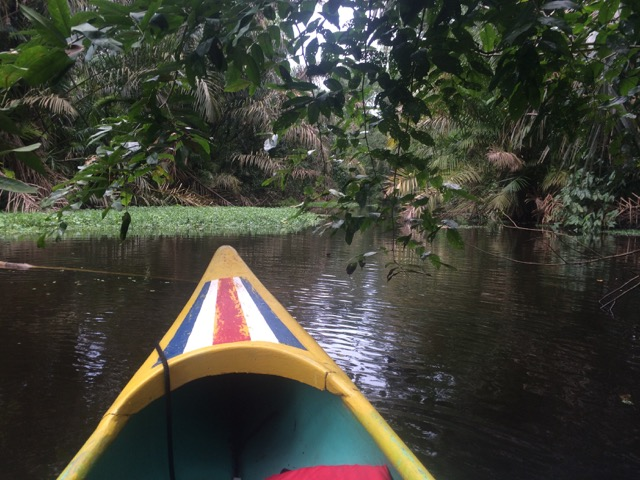 canot canaux Tortuguero