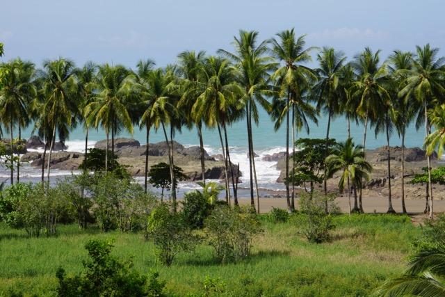 cote caraibe costa rica